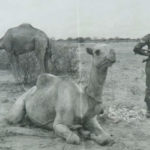 1967 Britain Made Secret Deal to Defend Kenya in Case of Invasion by Somalia
